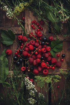 Grace Upon Grace Lexa Y Clarke, Deep Autumn, Ivy House, Spices And Herbs, Fruit Art, Nice To Meet, Fruits And Veggies, Vegetables, Food Art
