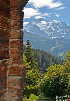 Swiss view Wengen