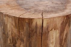 I think i'd skip the legs. Stumped How to Make a Tree Stump Table Tree Stump Furniture, Tree Stump Table, Table Furniture, Tree Stumps, Wood Stumps, Garden Coffee Table, Driftwood Table, Log Home Decorating, Log Homes