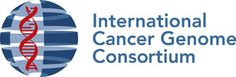 The International Cancer Genome Consortium (ICGC) has been organized to launch and coordinate a large number of research projects that have the common aim of elucidating comprehensively the genomic changes present in many forms of cancers that contribute to the burden of disease in people throughout the world. To-date. it has 47 committed projects. View ICGC data portal here: http://dcc.icgc.org/web/