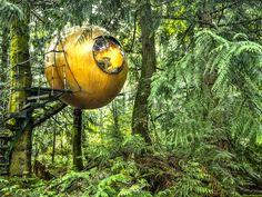 Suspended Spherical Treehouses - Free Spirit Spheres