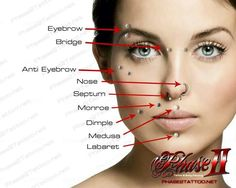 face piercings names and pictures - Google Search