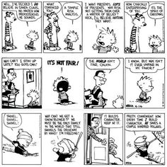 Fell in love with Calvin and Hobbs in  Barnes and Noble bookstore