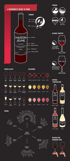 Infographic: A beginner's guide to wine which digs a little deeper than just the surface via @David Nilsson Horton and @CultWinesUK