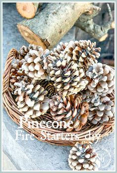 PINECONE FIRE STARTERS are great ways to get a fire roaring in the firepit. They are so easy to make and the also make a great gift!