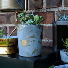 MadPotters: our Geometric Design Cement Pot has been getting a lot of love and attention on the new site!  Available now at www.etsy.com/shop/madpotters . . . . #cement #cementplanter #cementpots #concreteplanter #concretepots #cementgarden #concretegarden #succulents #succies #succulent #potting #planting #gardening #interiordesign #minimalistdesign #homedecor #staging #tablescape #deskaccessories #happypotting #shopsmall #shoplocal #madeinbrooklyn #madeinusa #nyc #brooklyn #eastflatbush…