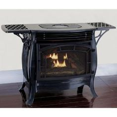 ProCom 25,000 BTU Ventless Dual Fuel Gas Stove with Remote-QNSD250RT - The Home Depot Propane Gas Stove, Pellet Stove, Natural Gas Stove, Stove Fireplace, Wall Fireplaces, Modern Fireplaces, Faux Fireplace, Fireplace Ideas, Fireplace Design