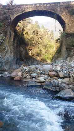 Los puentes para cruzar la barranca en las excursiones al río, veeennnn!!!