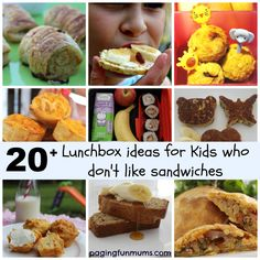 20+ Lunchbox Ideas for kids who don't like Sandwiches! #creatorsofgood