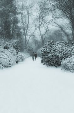 A walk in the snow (Germany) by NamtaN NamtaN / 500px