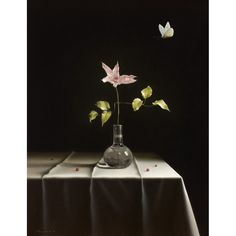 Pierre-Yves Russo - The White Butterfly