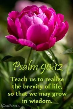 PSALM 90:12 - So teach us to number our days, that we may apply our hearts unto wisdom....KJV