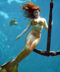 Underwater Attractions: Weeki Wachee Mermaid Show, Spring Hill, FL.