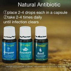 Young Living Essential Oils: Antibiotic | How Do It Info