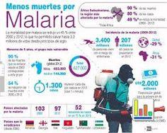 Resultado de imagen de infografia pesticidas