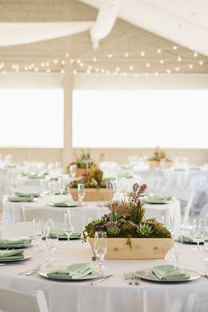 Succulent Table Decor, Succulent Wedding Centerpieces, Succulent Planters, Centerpiece Ideas, Wedding Mint Green, Sage Wedding, Wedding Coral, Wedding Colors, Wedding Flowers