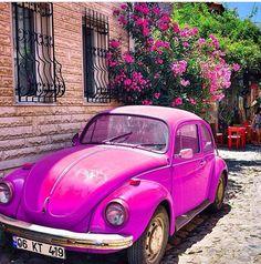 Old vintage cars vw beetles 34 ideas Pink Volkswagen Beetle, Beetle Car, Ashley Graham Vogue, Car Interior Sketch, Kdf Wagen, Old Vintage Cars, Pinewood Derby Cars, Cute Cars, Small Cars