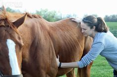 Like to travel, help horses and meet horse people? This could be the career for you.