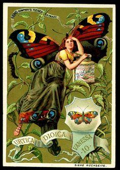 Liebig Butterfly Girl 5, 1890. German edition