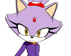 Blaze is staring into your soul (why isn't she watching the sol emeralds?) .