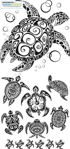 turtle-tattoos-vector-1665848895.jpg (700×1488)