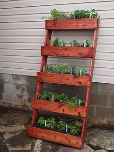 palette potager vertical potager de terrasse pinterest jardins id es de jardin et. Black Bedroom Furniture Sets. Home Design Ideas