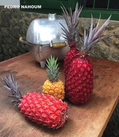 Puã - the colorful pineapples from BOTANICA POP LTDA 2017