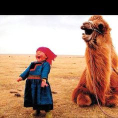 Camels are so much fun!