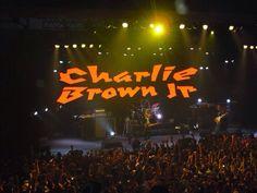 Gravação DVD Charlie Brown Jr - Música Popular Caiçara! São Paulo - SP