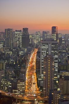 [[ジャパン] Evening skyline from Tokyo Tower Places To Travel, Places To See, Places Around The World, Around The Worlds, Tokyo Skyline, Japon Tokyo, Photos Voyages, World Cities, Beautiful Places