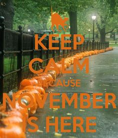 KEEP CALM BECAUSE NOVEMBER IS HERE
