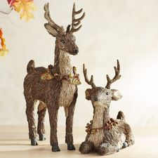 Natural Standing & Sitting Deer