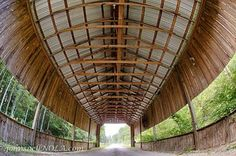 Covered Bridge in Southern Mississippi — off Henleyfield McNeill Rd, near Carriere, MS. Photo by John Snell.