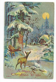 Antique 1909 Christmas Post Card Deer by Country Home under Full Moon ## | eBay