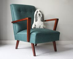 Ménagerie is a local label that makes amazing cat and dog shaped cushions Animal Cushions, Basset Hound, Accent Chairs, Pony, Pretty, Furniture, Handsome, Friends, Home Decor