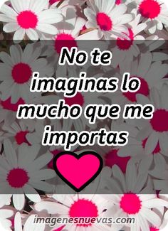 Amor Quotes, True Quotes, Margarita, Thalia, Google, Buen Dia, Loving Someone Quotes, Good Night Quotes Images, Best Images Of Love