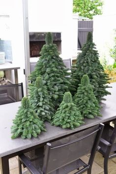 Cute christmas trees.