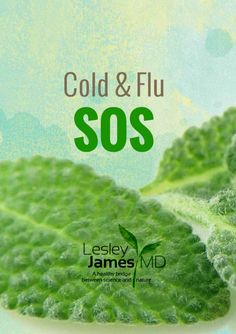 While we try our hardest to avoid getting a virus, even the healthy of us succumb from time to time. If it should happen to you, here are my favorites to shorten the duration and lessen symptoms. Cold Symptoms, Hormone Imbalance, Autoimmune Disease, Ibs, Science And Nature, Natural Healing, Shit Happens, Healthy, Medicine