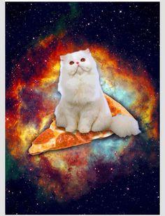 Pizza space cat