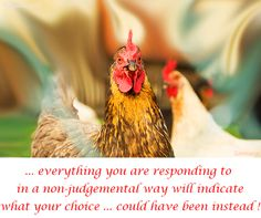 ... everything you are responding to in a non-judgemental way will indicate what your choice ... could have been instead !