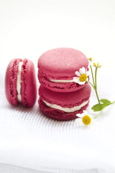 blackberry and raspberry macarons with ginger and lime buttercream