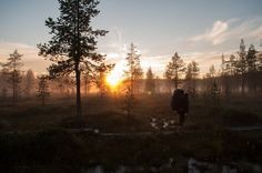 Iso-Syöte, Finland at Midnight #finland #midnightsun #hiking #travel