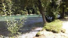 #aare #fluss #river #bern #eichholz #camping #city #schweiz #switzerland #swiss #suisse #landscape #natur #bärn Bern, Camping, Land Scape, Switzerland, Country Roads, River, City, Instagram Posts, Plants