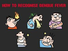 How to recognise symptoms of dengue fever
