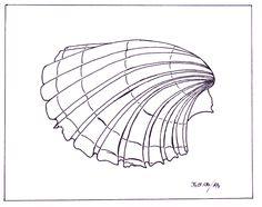 Muschel-Zeichnung