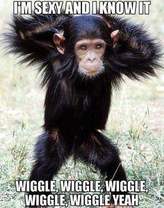 Wiggle Wiggle Wiggle Wiggle Wiggle yeah!