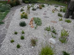 Zu Gast im Hortus Campanularum, dem Garten der Glockenblumen – Hortus Girasole Stepping Stones, Outdoor Decor, Plants, Insect Hotel, Planting, Nature, Stair Risers, Plant, Planets