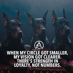 Nice Success quotes:   Keep your circle of trust tight  ... Check more at http://pinit.top/quotes/success-quotes-keep-your-circle-of-trust-tight-5/