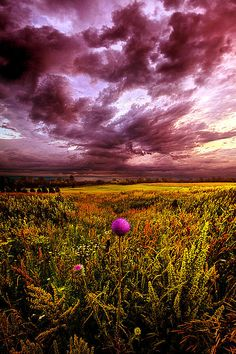 """Time and Again "" Horizons by Phil Koch. Lives in Milwaukee, Wisconsin, USA"