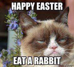 Happy Easter. Eat a rabbit. - grumpy cat